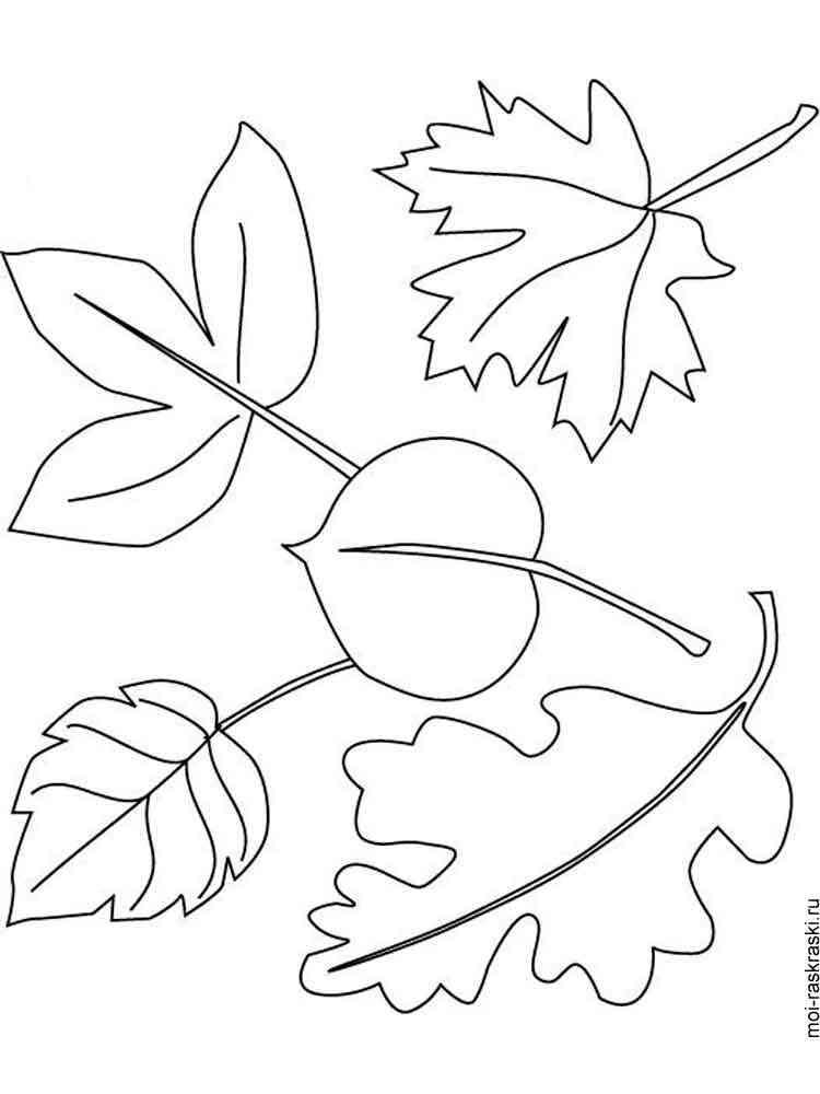 Раскраска для детей листья осени