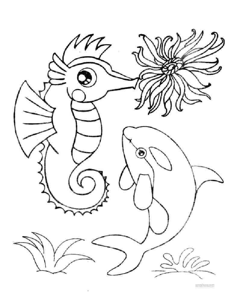 Картинка морские обитатели раскраска