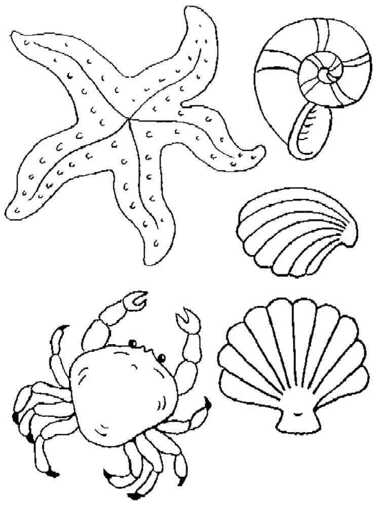 Картинки на морскую тематику распечатать