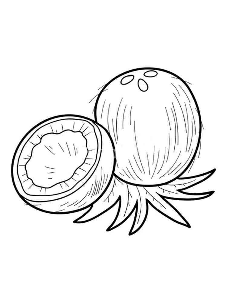 фасон мастерски рисунок кокоса карандашом что ждите