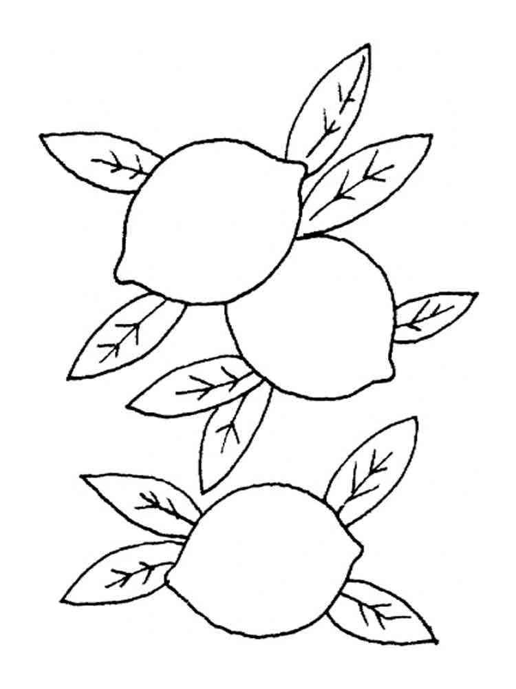 лимон картинка для детей раскраска