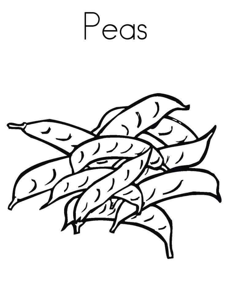 Раскраска Горох - распечатать в формате А4