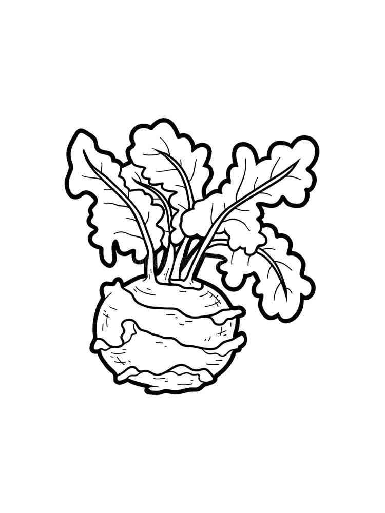 Раскраска Кольраби - распечатать в формате А4