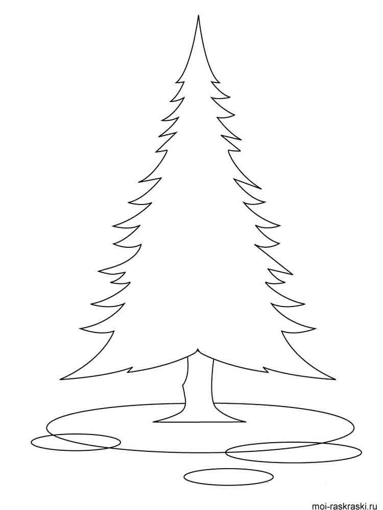 Раскраски елка лесная