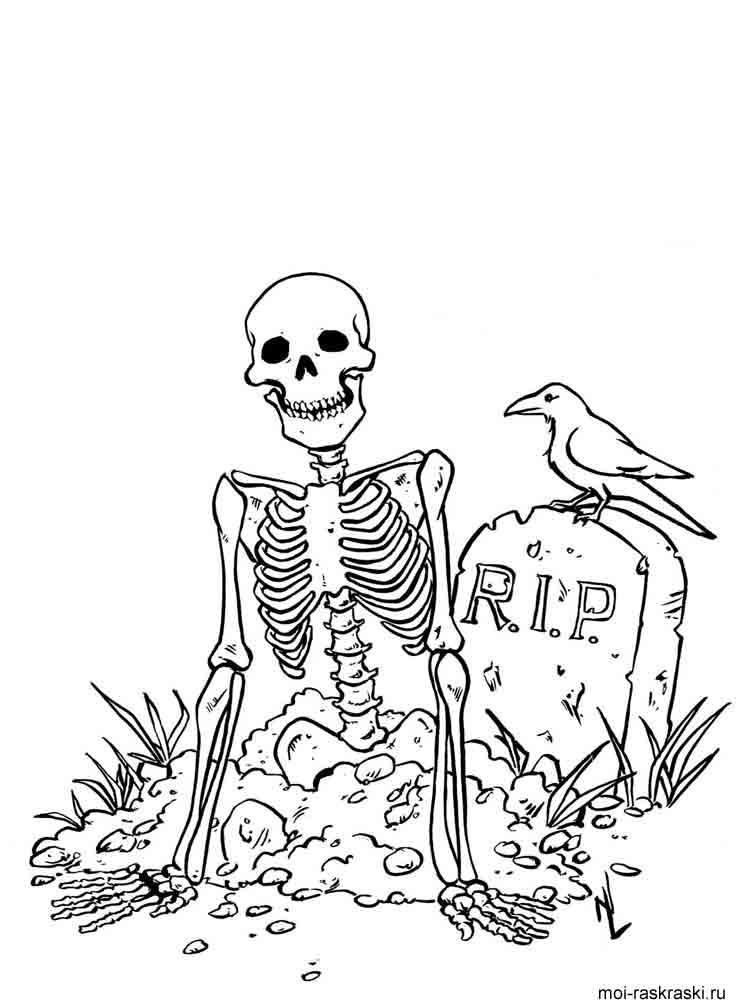 Раскраски скелеты распечатать