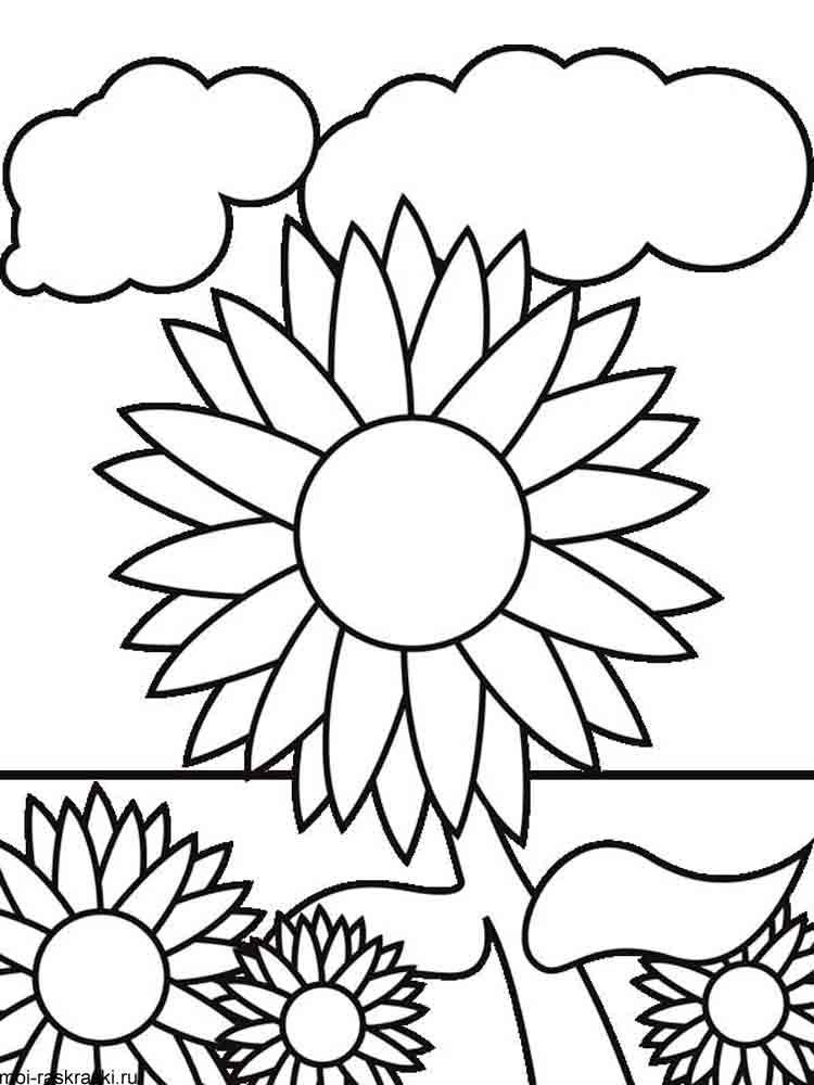 Раскраски для девочек онлайн том и джерри