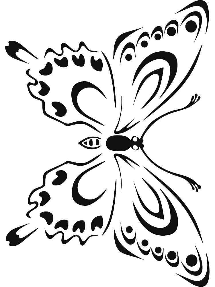 Бабочка картинки на окна