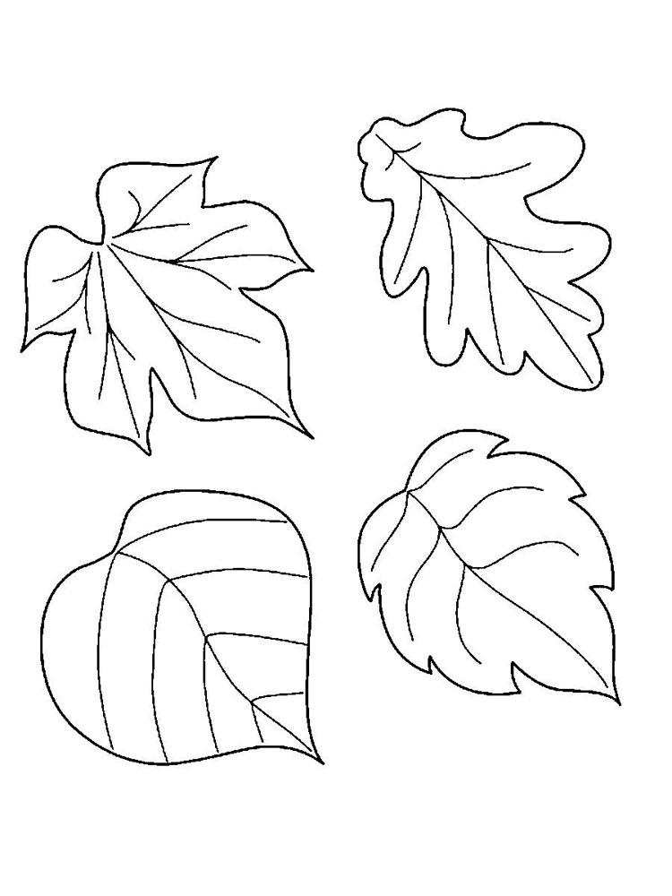 Картинки трафарет листья