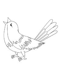nightingale-coloring-page